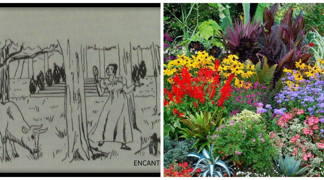 Graus 1 a 10 de Jardim – ou Touro