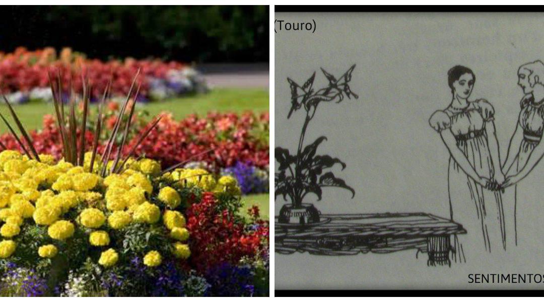 Graus 11 a 20 de Jardim – ou Touro